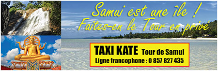 banner taxi kate1